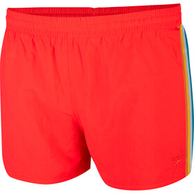 speedo Retro Short de bain 13'' Homme, fed red